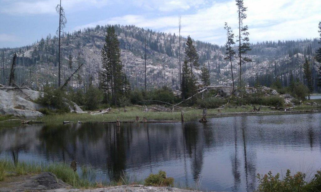 Blackwell via Fall Creek Saddle Trail 108 and Crestline Trail 109