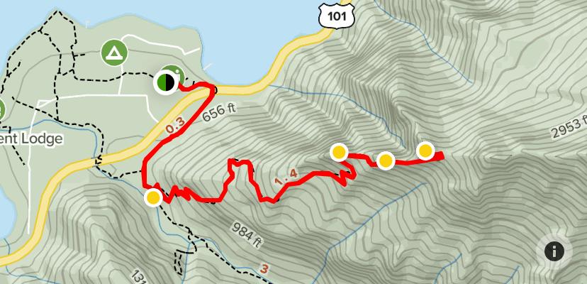 Mount Storm King Hiking Trail